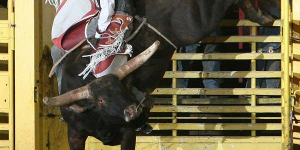 Fort Dalles Pro Rodeo Bull Riding